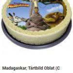 madagaskar tårtbilder 2