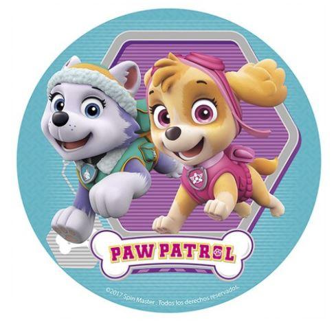 paw patrol bildtårta