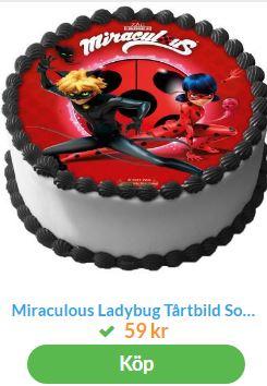 tårta med ladybug 3